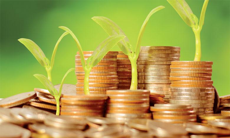 finance verte financement vert