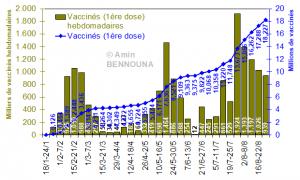 bilan vaccination
