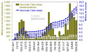 bilan vaccin